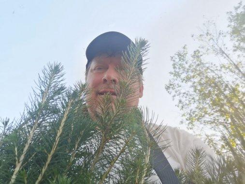 Tohtori kenttätöissä III: Näiltä puilta näkee vielä metsän
