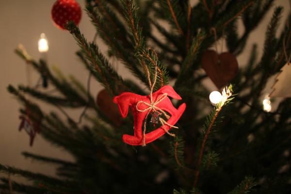 Joulukoriste kuusessa.