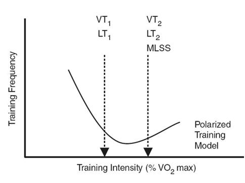 """Polarisoitu kestävyyden harjoitusmalli, jossa korostuu matalatehoisen aerobisen harjoittelun määrä ja toisaalta kovatehoisten intervallien harjoittelu, kun """"välimallin"""" harjoittelu on vähäisempää (Seiler & Kjerland 2006)."""